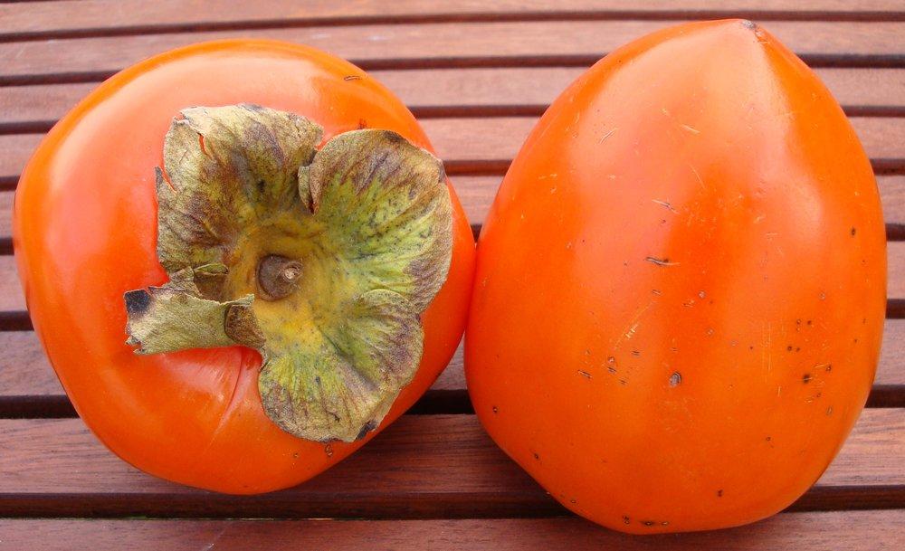 tanenashi-persimmon-5018.jpg