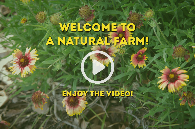 A Natural Farm