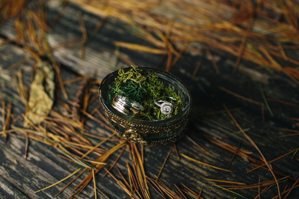 photo by Jess Hunter / Pacific Northwest wedding and elopement photographer / intimate Seattle mountain wedding at Wild Lily Ranch / Seattle, washington elopement photographer / Washington state elopement / forest wedding photographer / forest wedding ring box
