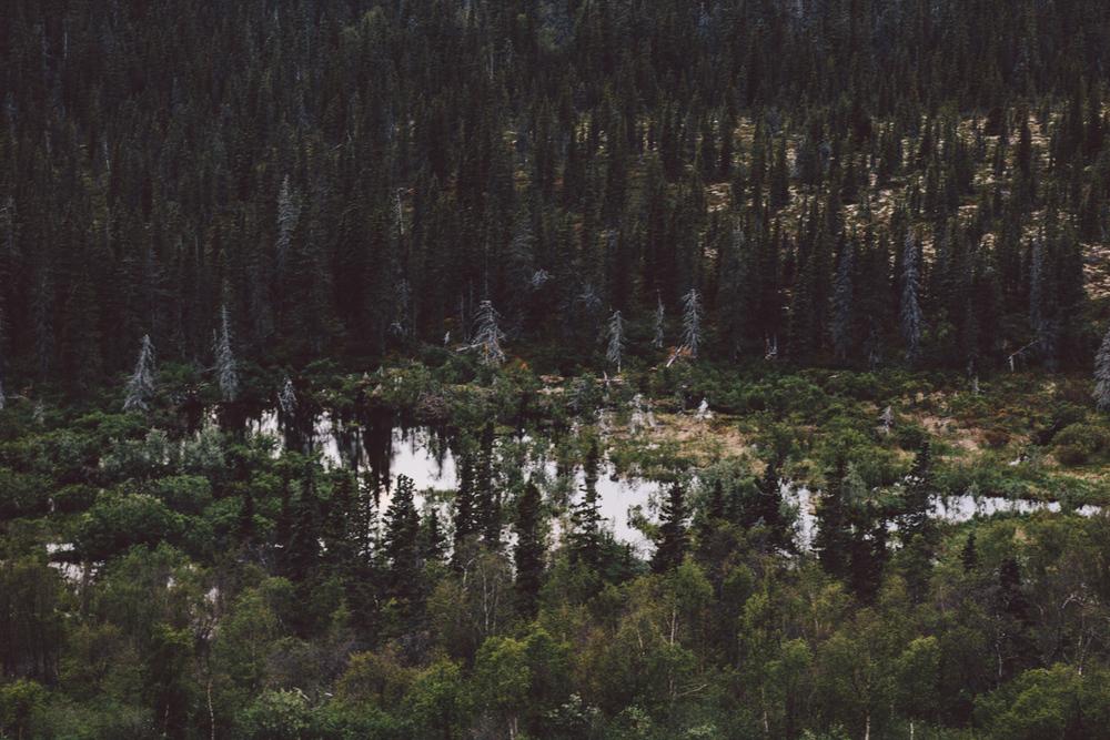 Dillingham, Alaska adventure photography