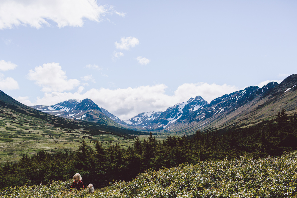 Photo by Jess Hunter, Anchorage Alaska wedding & elopement photographer, Chugach mountain range, Anchorage mountain portrait sesssion, adventure photography, elopement locations in Alaska, Jessica L. Hunter, mountain session in Alaska