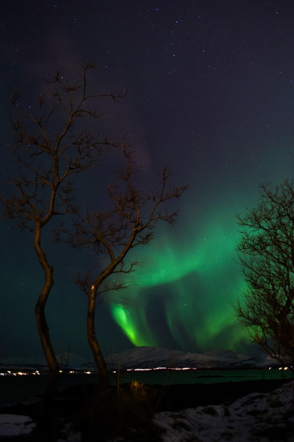 Northern Lights-4.jpg