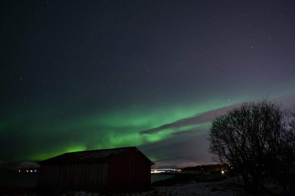 Northern Lights-5.jpg
