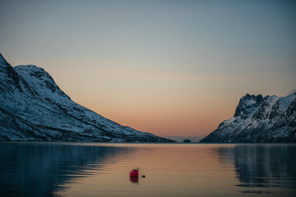 vogelsfotos geschichten portfolio destination norwegen tromsö-051.jpg