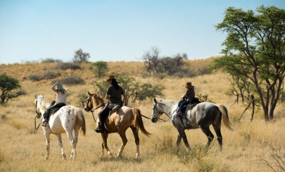 Horseback riding in the Kalahari