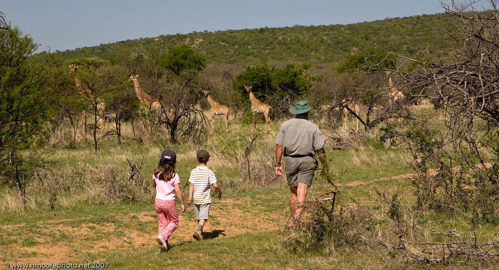 Walking safari for children