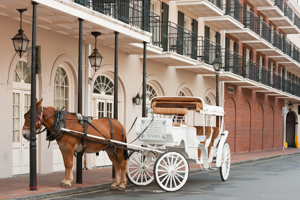 NOLA-Carriage Ride HERO.jpg