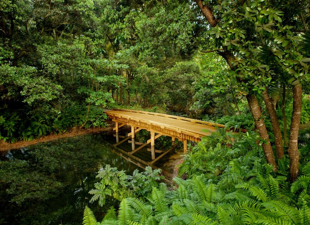 Nature Trail.jpg