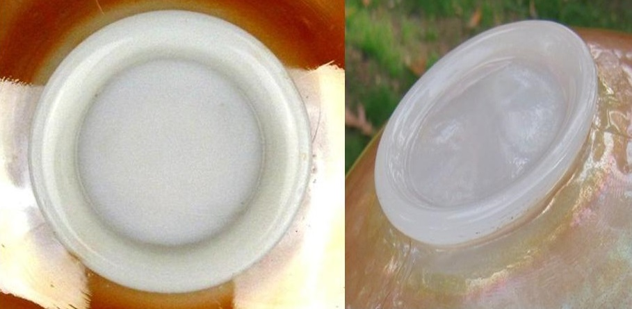 The bowl on the left is marigold over Milk Glass, while the bowl on the right is over Moonstone.  Notice how the Moonstone looks like cloudy, slightly see-through glass, which the Milk Glass is obviously thick white glass.