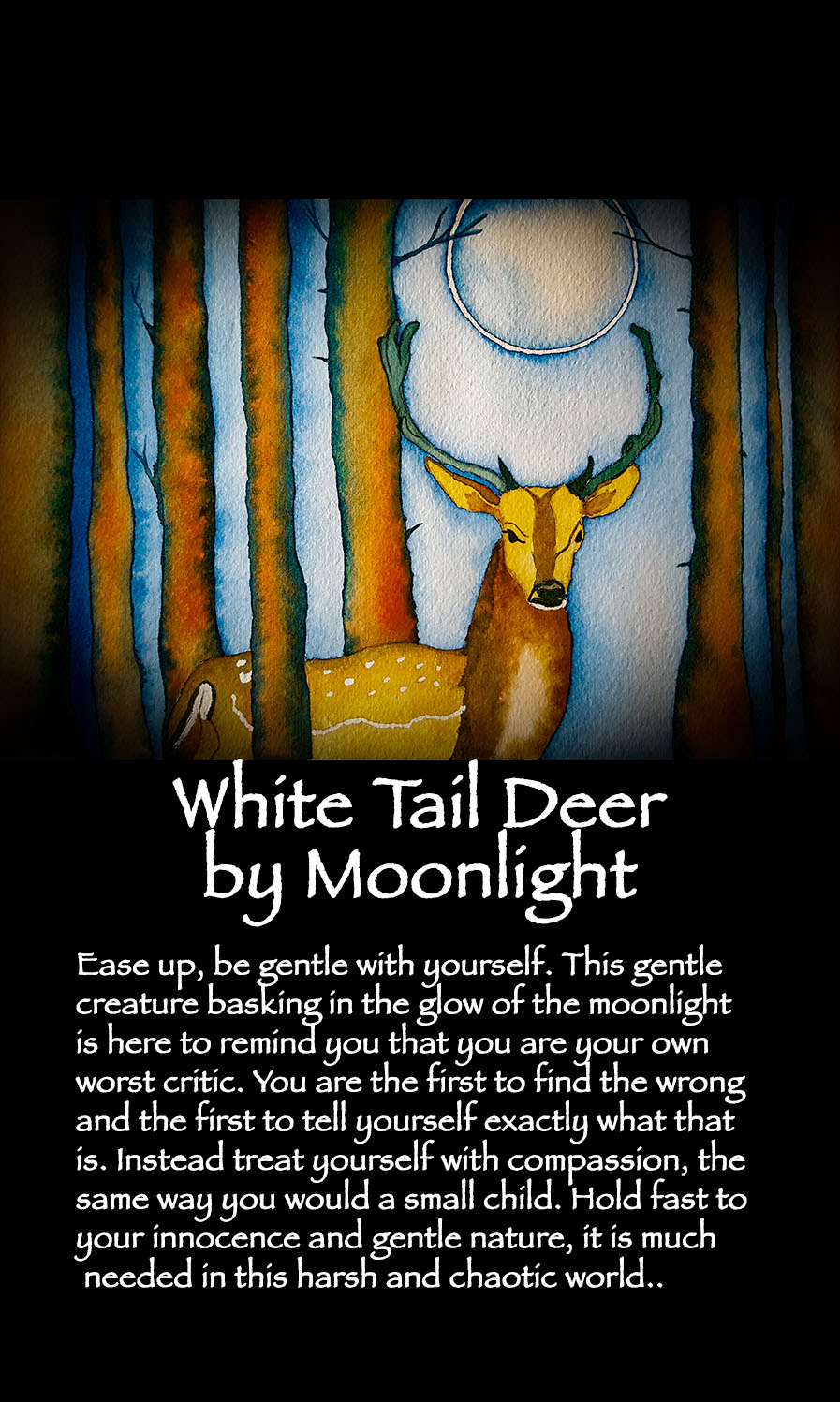 WhiteTailDeerbyMoonlightCard - Correction.jpg