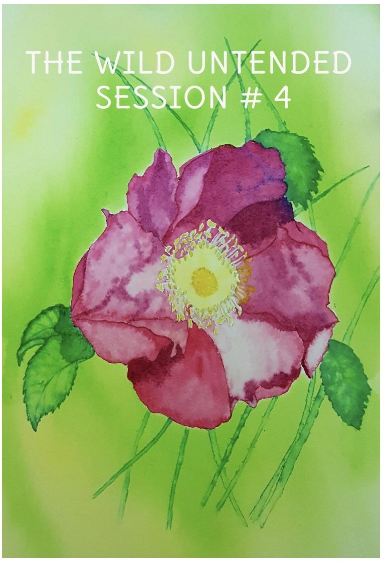 Session 4.jpeg