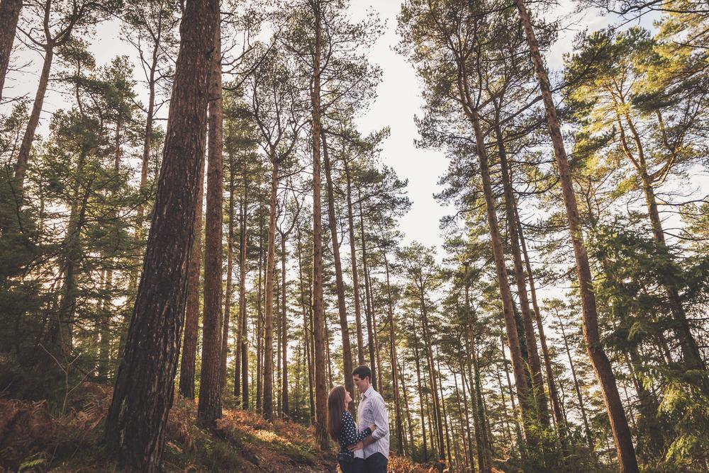 Engagement Shoot, Haldon 1