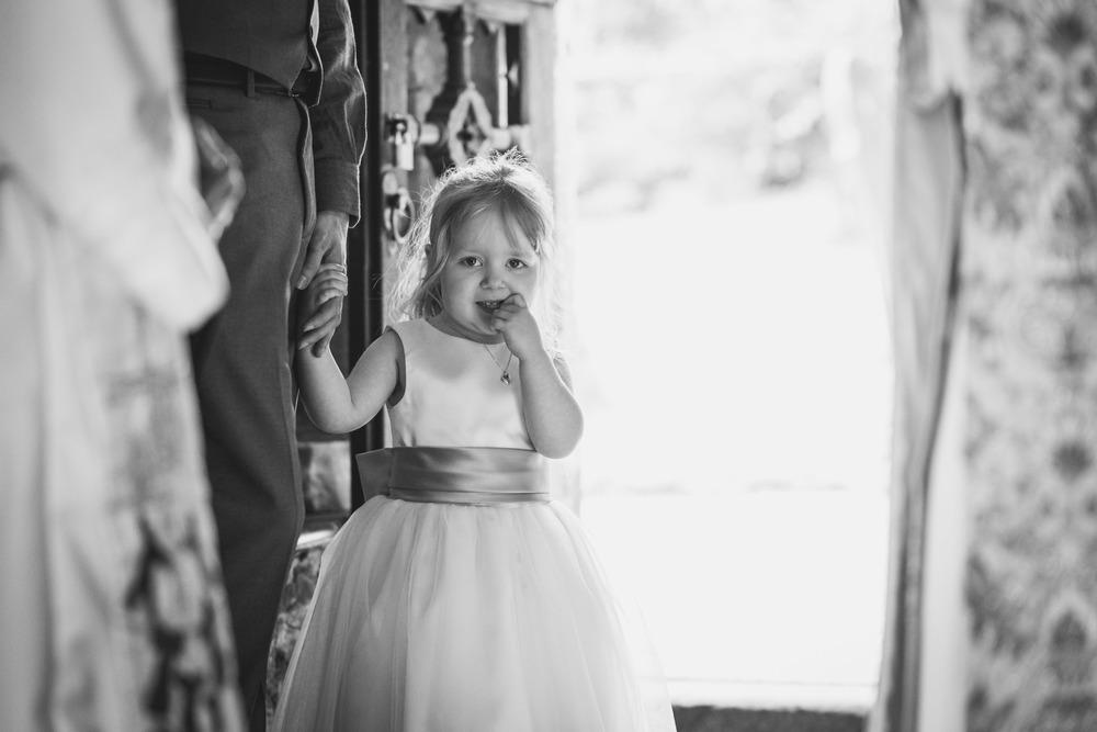 Ash Rescue Centre Wedding Photography 4