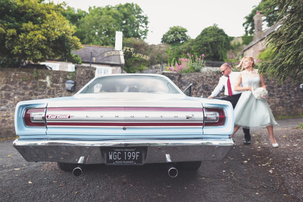 Ash Rescue Centre Wedding Photography 7