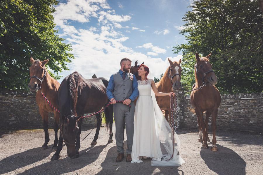 Wedding Venue Devon - Ash Rescue Centre 2