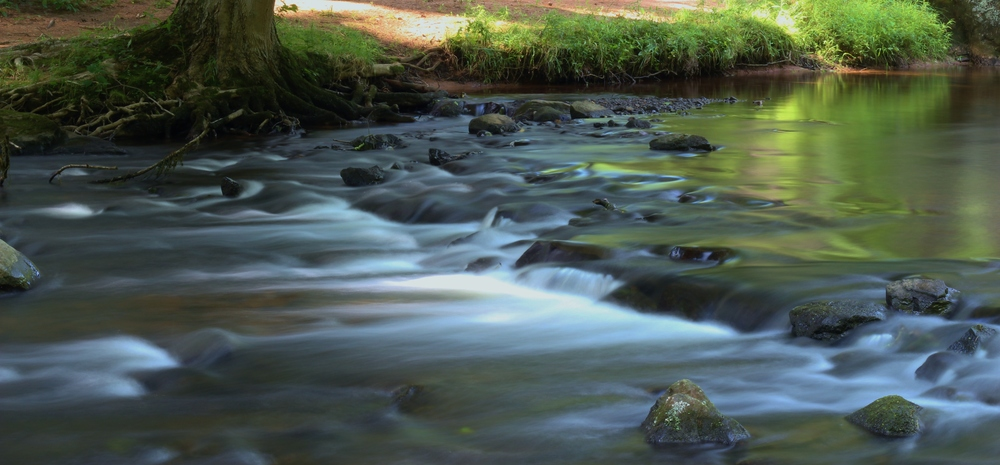 Sleeping Giant State Park Stream.JPG