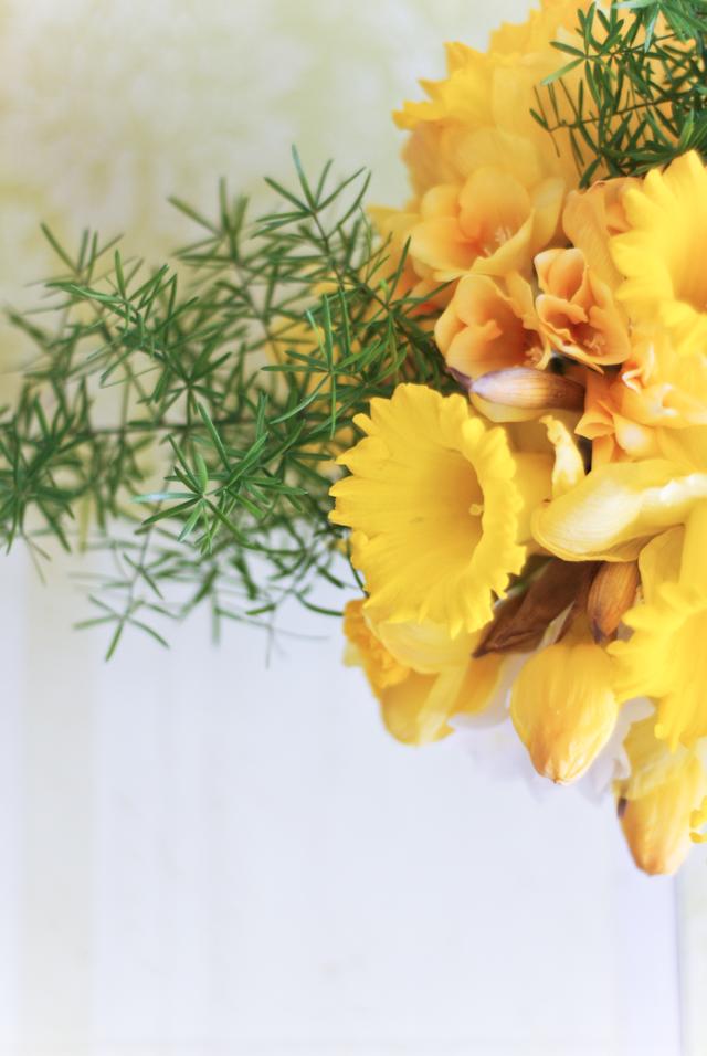 LaurylLane-Daffodils-03