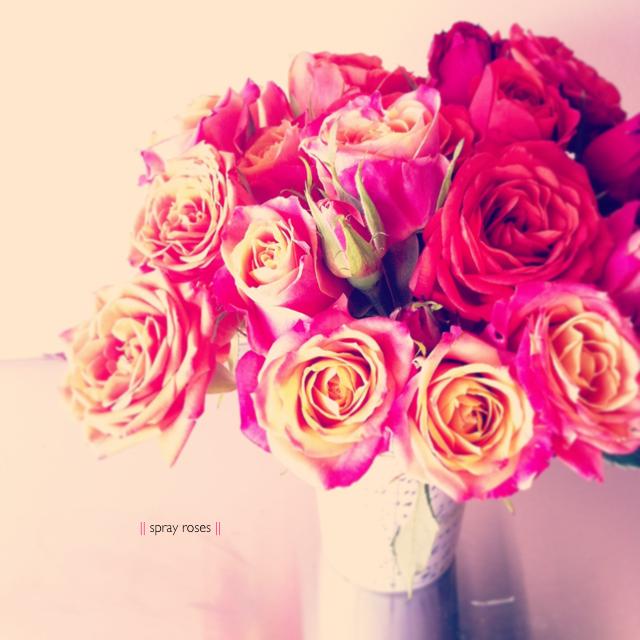 LaurylLane-Instagrams-3607