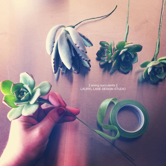 LaurylLane-Instagrams-3803