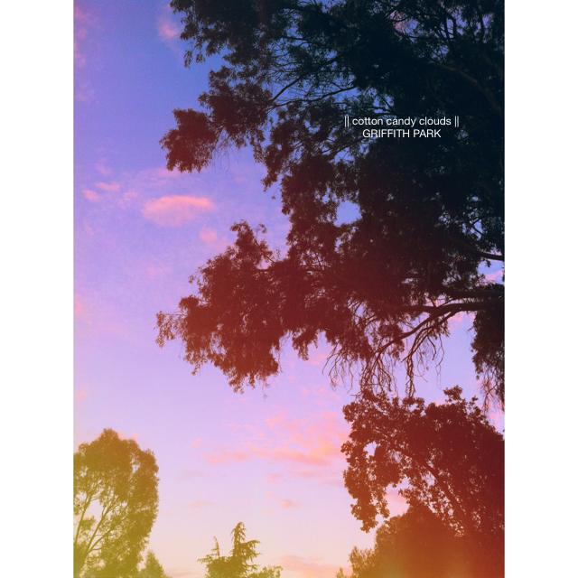 LaurylLane-Instagrams-3909