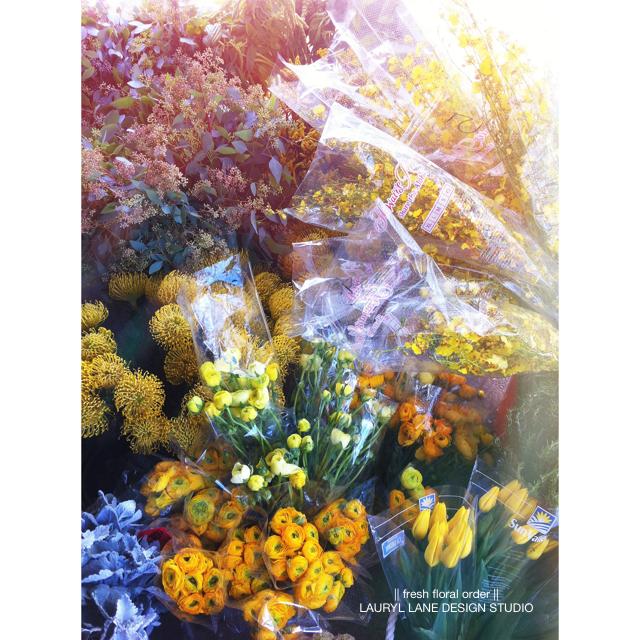 LaurylLane-Instagrams-4006