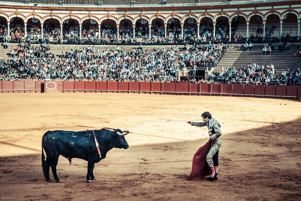 104-Sevilla Bull Fight (1500x1000).jpg