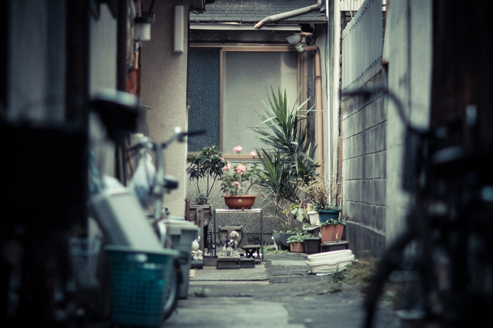 Kyoto Day 3 399-2 (1500x1000).jpg