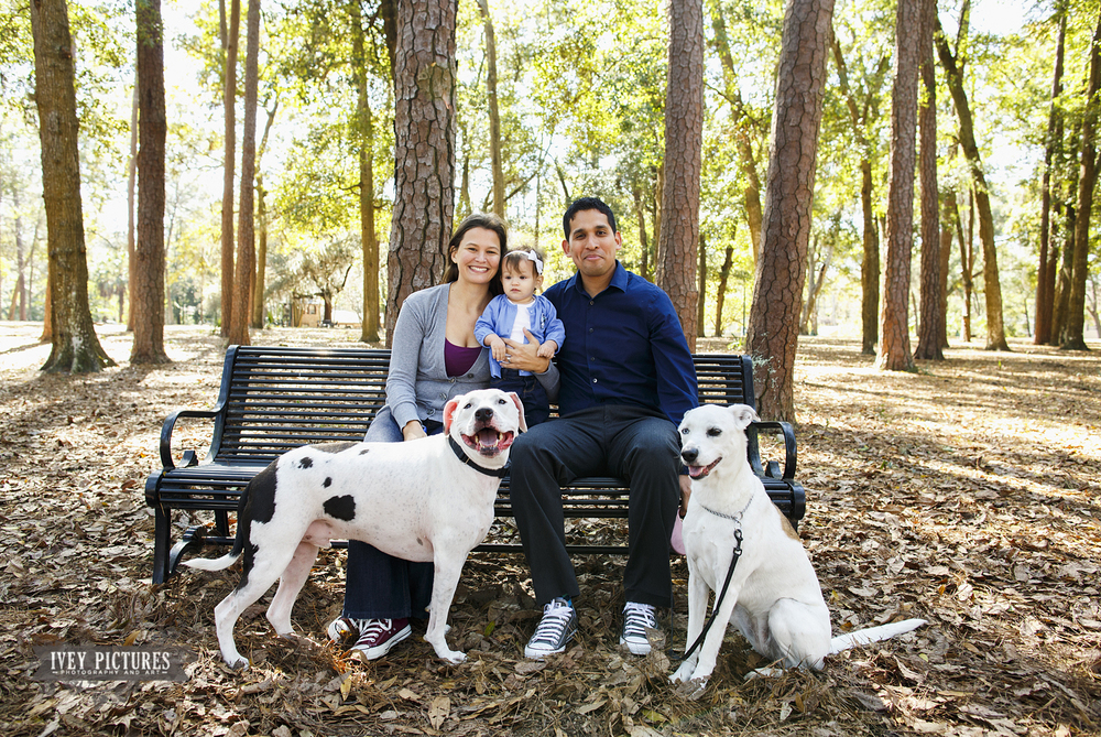Boone Park family session jacksonville