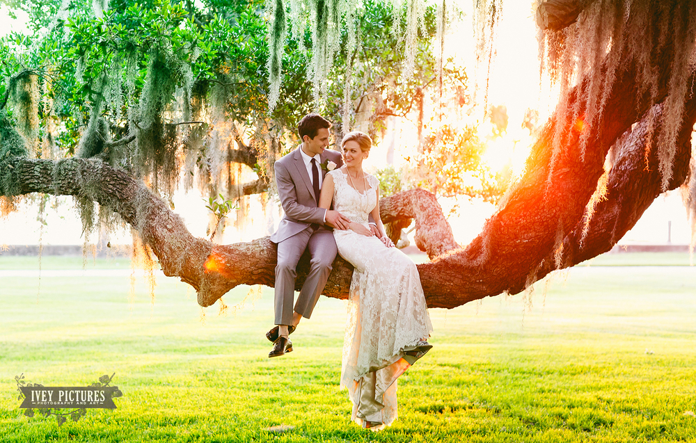 Bride and Groom in a tree Jekyll Island Club
