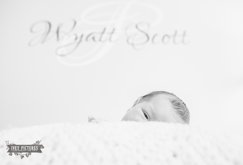 Jacksonville creative newborn photographer