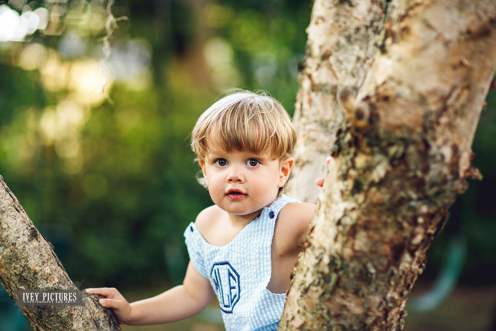 kid climbing tree