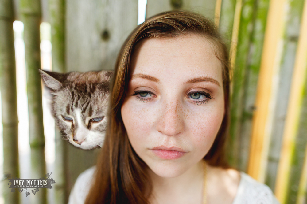 senior pictures with cat