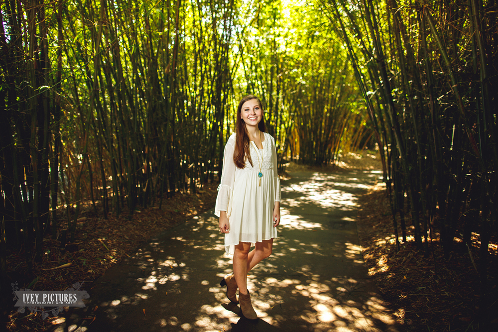 picture in bamboo