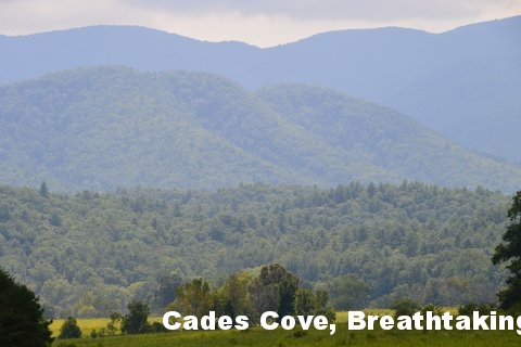 Cades Cove Loop - The Smokies
