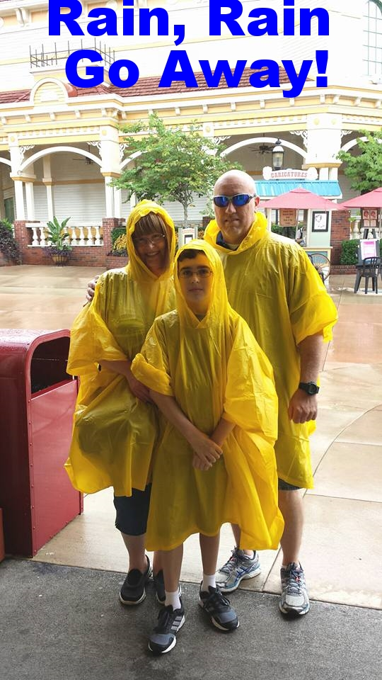Dollywood in the rain.jpg