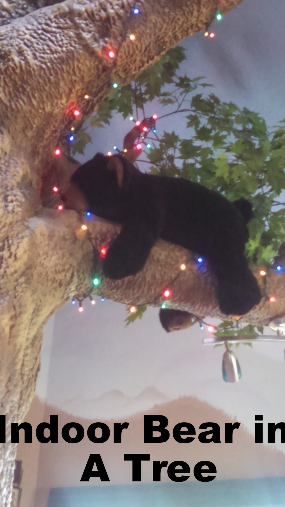 BEAR IN A TREE.jpg
