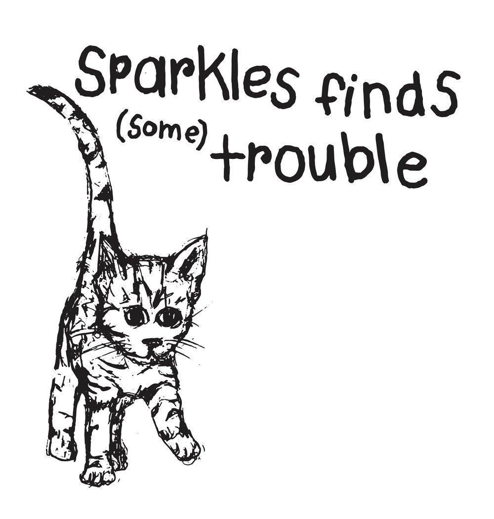 SPARKLES_cat.jpg