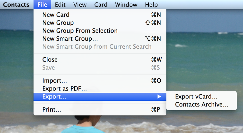 Contacts Export Options