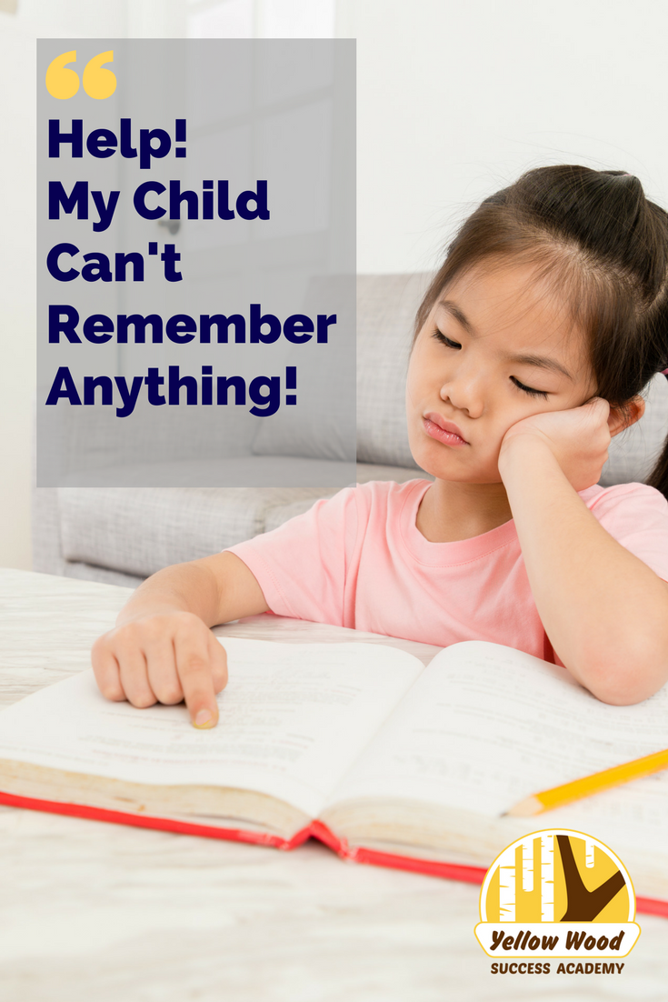 Help! My Child Doesn't Remember Anything! (3).png