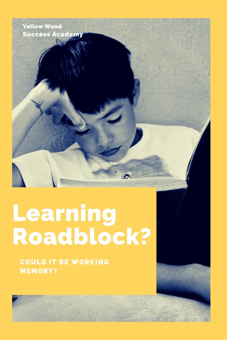 learningroadblock?