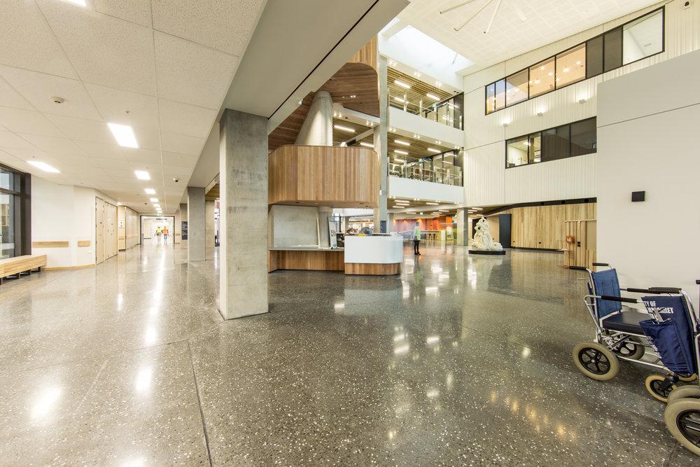 Burwood_hospital-125.jpg