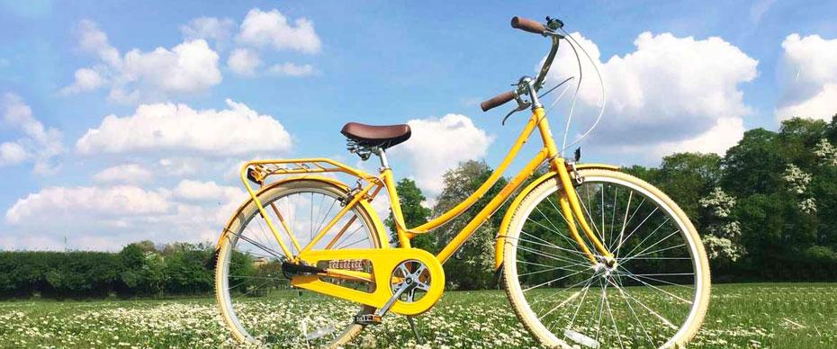 adult-bike-ability1.jpg