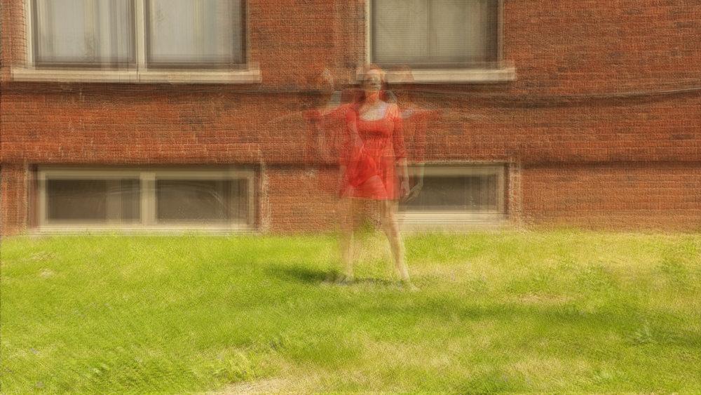 beedancechronophotography2.jpg