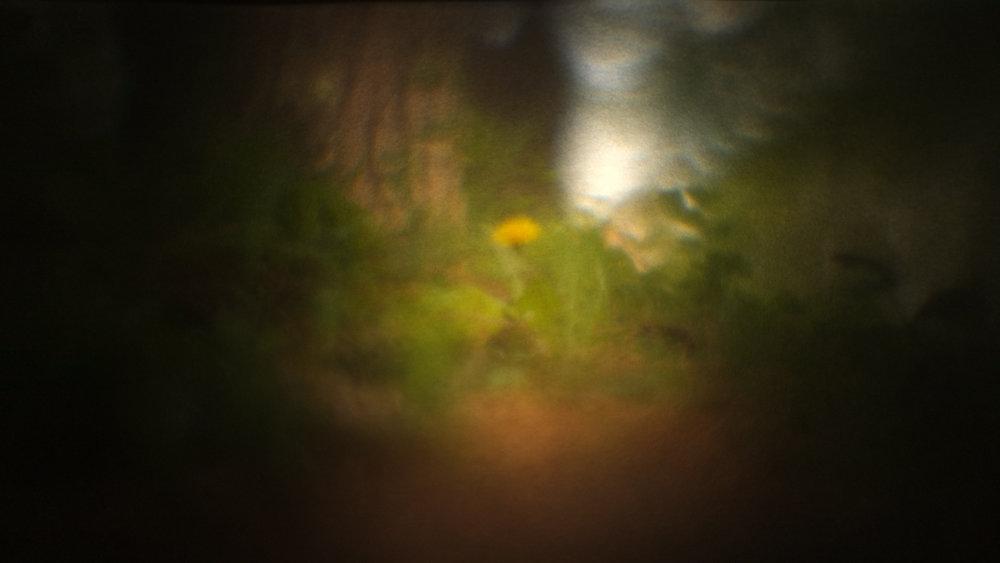 cameraobscura11.jpg