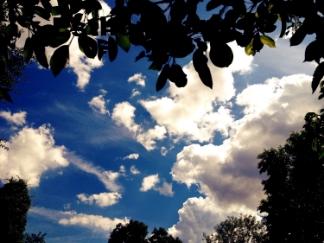 In Between,  Digital Photograph