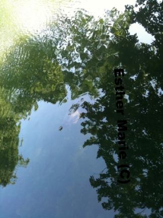 "Hecks Reflection #13 11"" X 8.5"" Digital Photograph"
