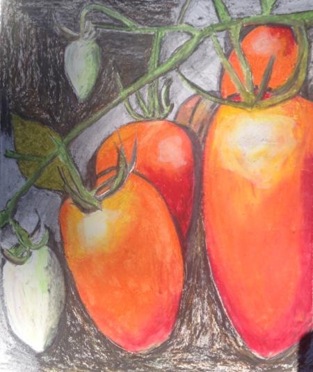 """Clean Romano Tomato, 8 1/2"""" x 11"""", Oil Pastel"""