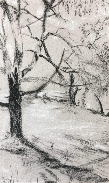 """Shadows from Massive Tree at Vermont Studio Center, 8 1/2"""" x 11"""", charcoal"""