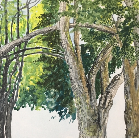"""Canopy of Trees, 8"""" x 8"""", Gouache (Best In Show Plein Air Event Northport)"""
