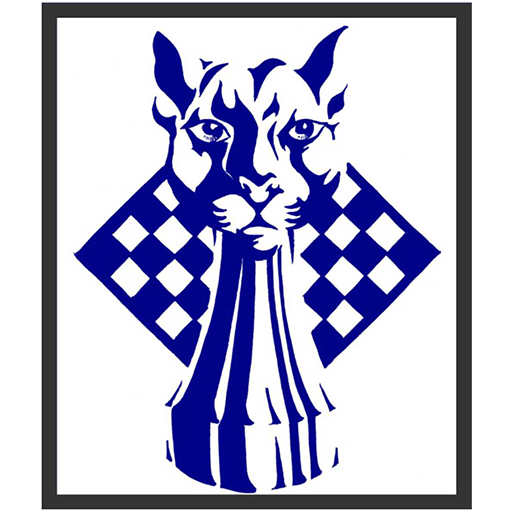 Steve Jones - Blue Panther LLC.png